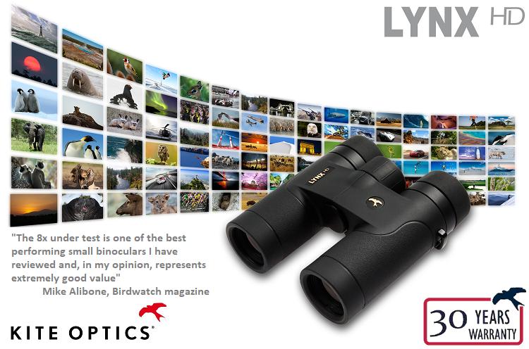 Kite Lynx HD 8x30 Binoculars