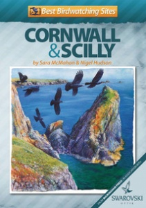 Best Birdwatching Sites: Cornwall and Scilly