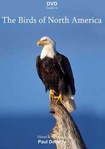 DVD Guide to the Birds of North America