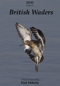 DVD Guide to British Waders