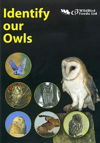 Identify Our Owls DVD