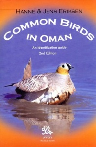 Common Birds in Oman: An Identification Guide