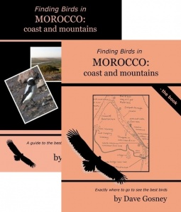 Finding Birds in Morocco: coasts & mountains DVD/Book Pack