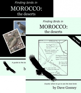 Finding Birds in Morocco:the deserts DVD/Book Pack