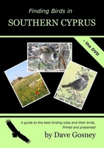 Finding Birds in Southern Cyprus DVD