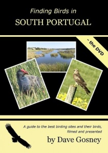 Finding Birds in South Portugal DVD