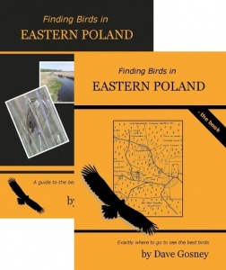 Finding Birds in Eastern Poland DVD/Book Pack