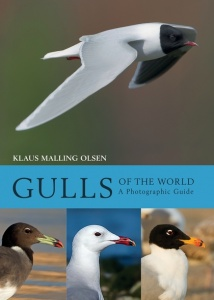 Gulls of the World: A Photographic Guide