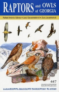 Raptors and Owls of Georgia