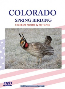 Colorado Spring Birding DVD