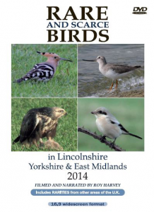 Rare and Scarce Birds in Lincolnshire, Yorkshire & East Midlands 2014 DVD