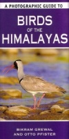 A Photographic Guide to Birds of the Himalayas