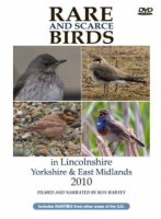 Rare and Scarce Birds in Lincolnshire, Yorkshire & East Midlands 2010