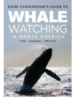Mark Carwardine's Guide to Whale Watching in North America: USA, Canada, Mexico.
