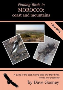 Finding Birds in Morocco: coasts & mountains DVD
