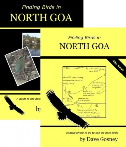 Finding Birds in North Goa DVD/Book Pack