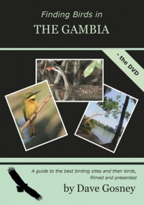 Finding Birds in The Gambia DVD