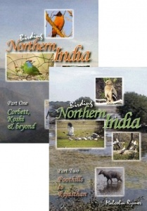 DVD Birding in Northern India: Parts 1 & 2