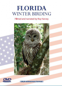 Florida Winter Birding DVD