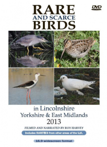 Rare and Scarce Birds in Lincolnshire, Yorkshire & East Midlands 2013 DVD