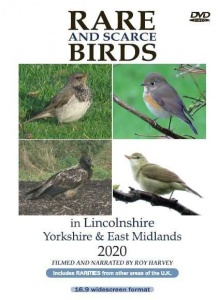 Rare and Scarce Birds in Lincolnshire, Yorkshire & East Midlands 2020 DVD