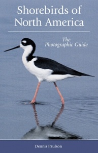 Shorebirds of N. America: A Photographic Guide