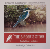 Collared Kingfisher Pin Badge (Limited Edition)