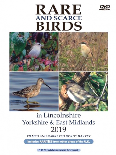 Rare and Scarce Birds in Lincolnshire, Yorkshire & East Midlands 2019 DVD