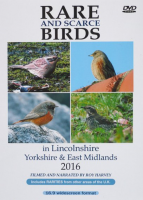 Rare and Scarce Birds in Lincolnshire, Yorkshire & East Midlands 2016 DVD