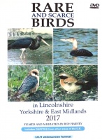 Rare and Scarce Birds in Lincolnshire, Yorkshire & East Midlands 2017 DVD