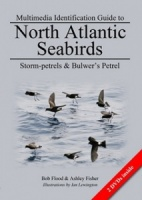 Multimedia Identification Guide to North Atlantic Seabirds: Storm-petrels & Bulwer's Petrel
