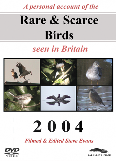 Rare and Scarce Birds DVD: 2004