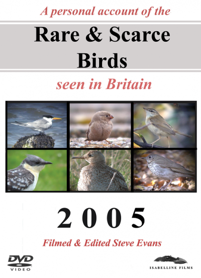 Rare and Scarce Birds DVD: 2005