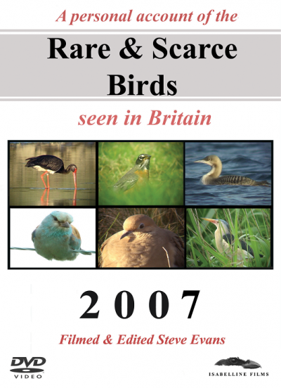 Rare and Scarce Birds DVD: 2007