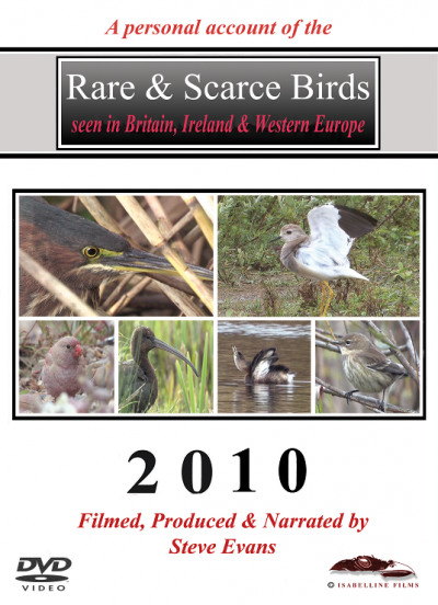 Rare and Scarce Birds DVD: 2010